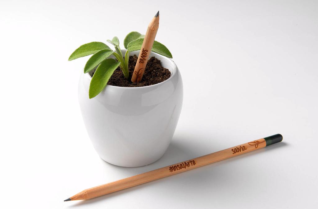 Idee gadget personalizzati: fai conoscere la tua azienda